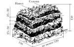 Шампиньоны можно выращивать на навозе потому что они