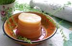 Как выращивать чайный гриб в домашних условиях с нуля?