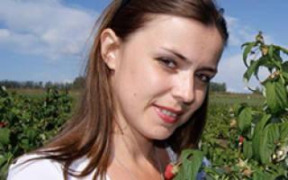 Как в голландии выращивают клубнику в открытом грунте?