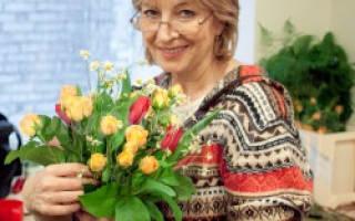 Как обрезать чайно гибридные розы на зиму