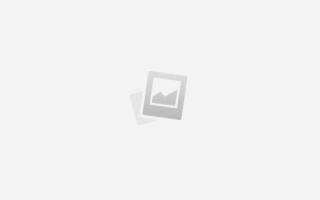 Определить комнатное растение по внешнему виду
